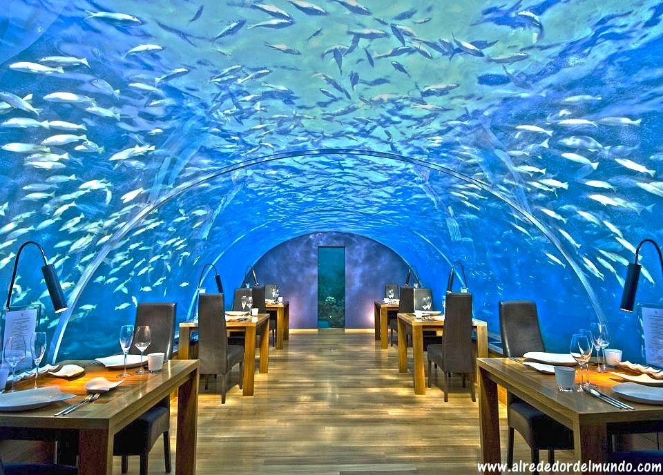 El restaurante submarino m s extra o del mundo for Hotel bajo el agua precio