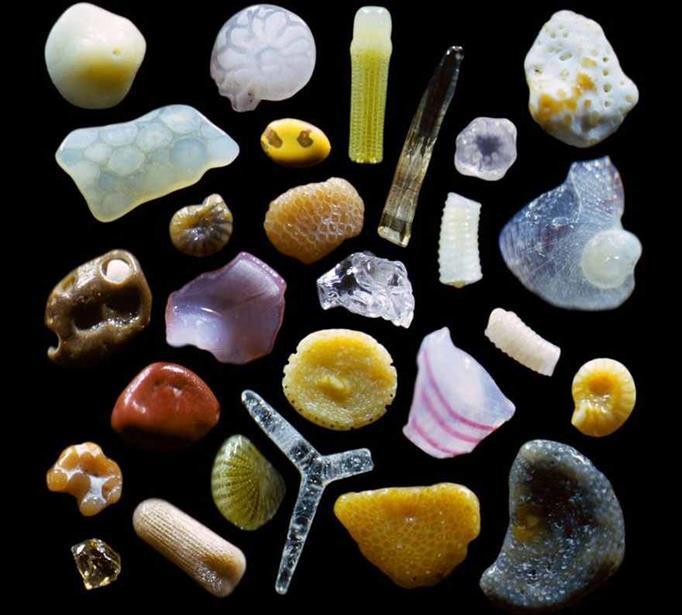 Granos de arena ¡Parecen Joyas bajo un microscopio! 1