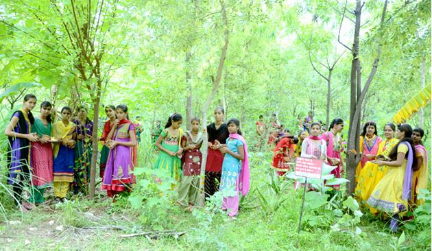 Un pueblo en la INDIA planta 111 árboles cada vez que nace una niña , tierra verde 4