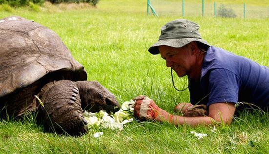 Conoce al animal más antiguo del mundo. 6