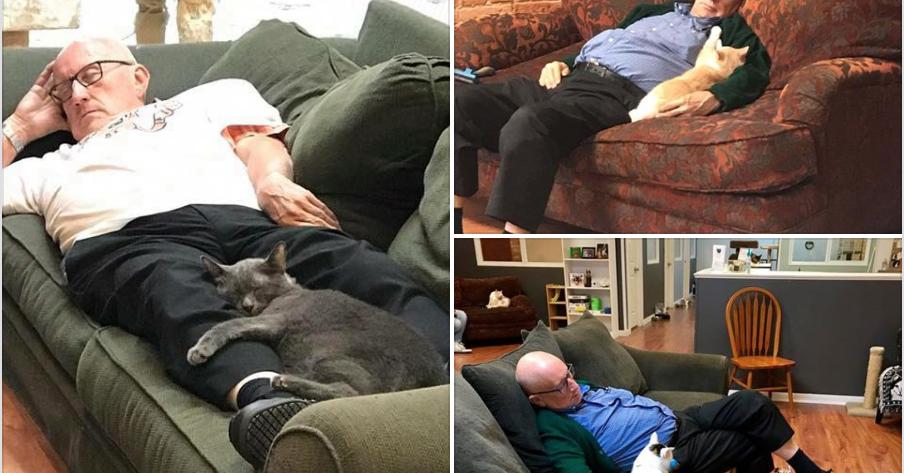 abuelo y gatos alrededordelmundo